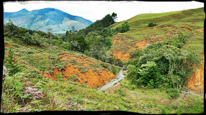 Colombia soil
